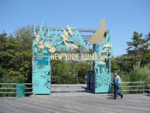 BoldLeads Long Island Aquarium